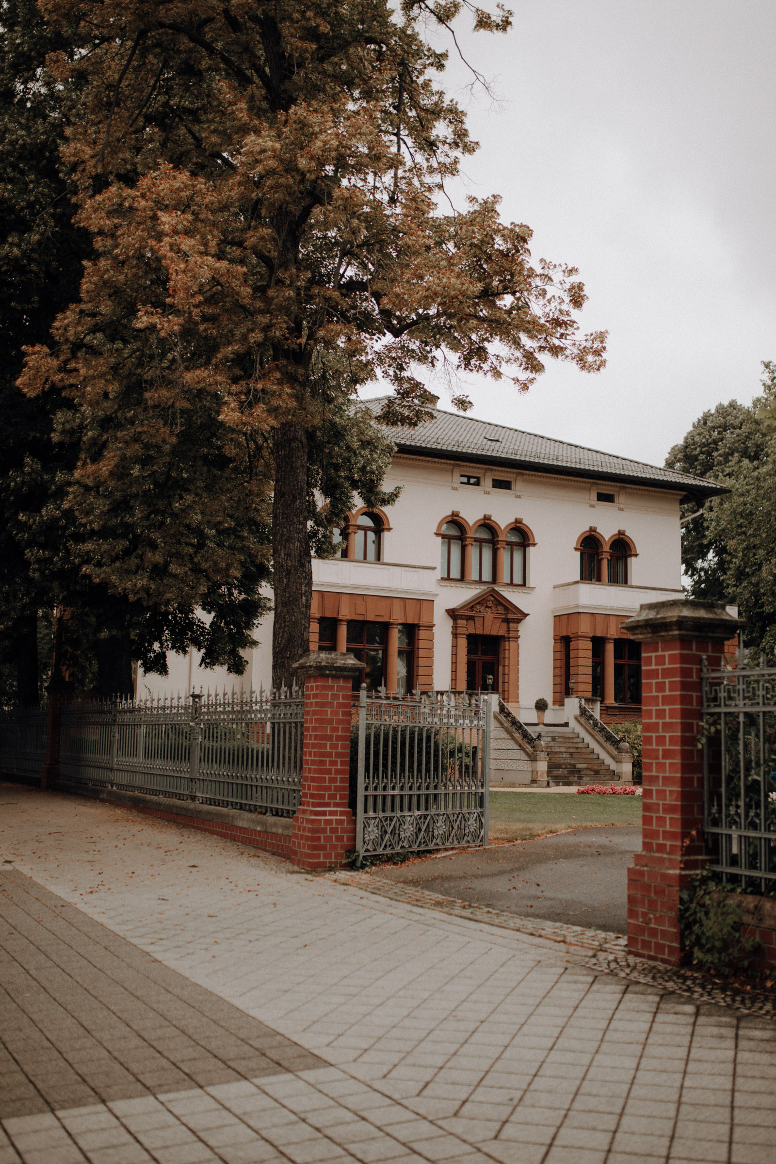 Hochzeitsfotograf Magdeburg im Standesamt
